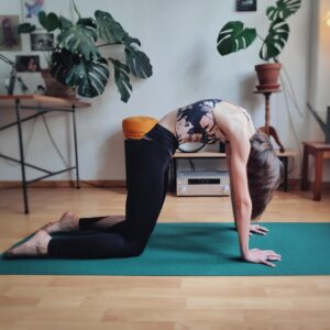 get started with yoga mustknow yoga poses for beginners