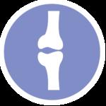 Two bones icon