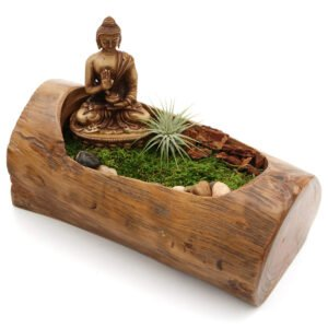 Natural Tree Branch Buddha Terrarium