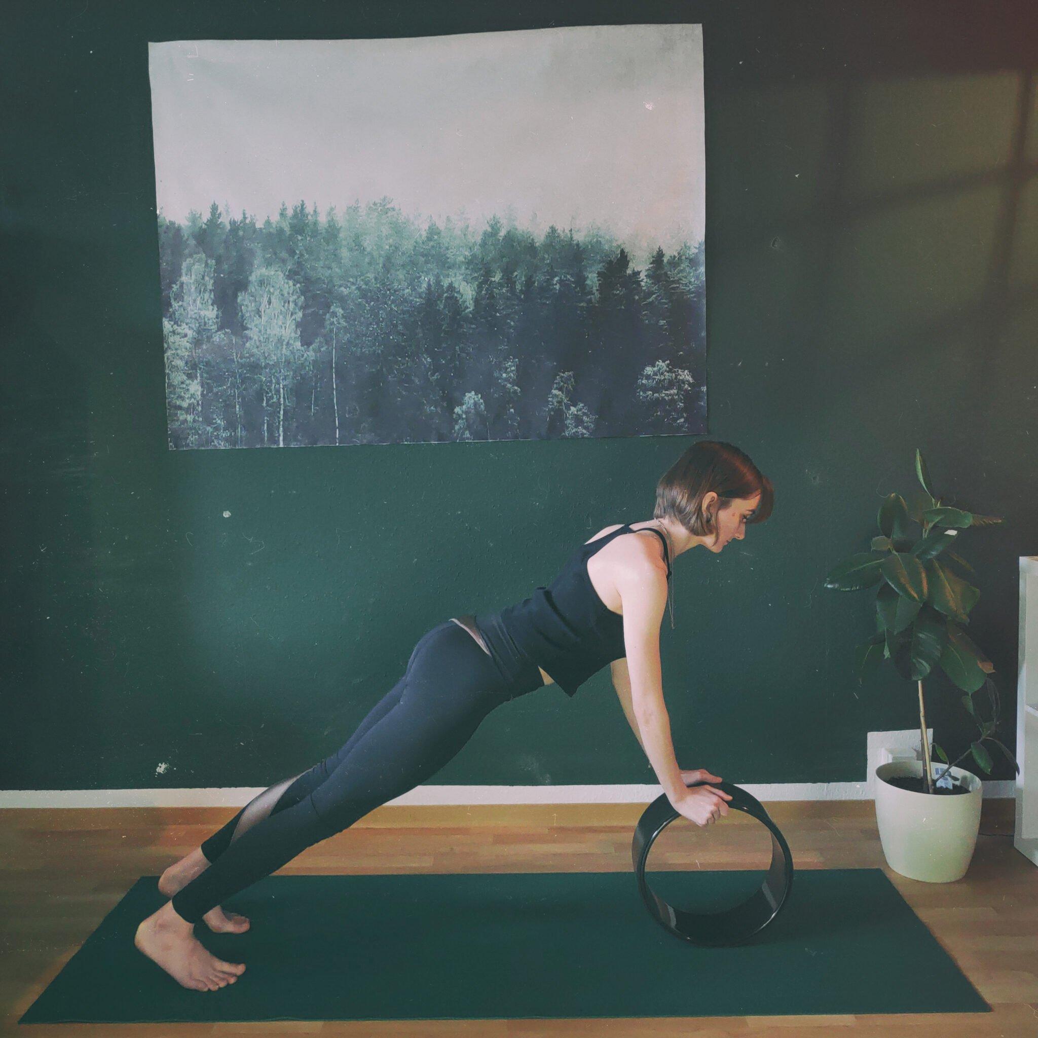 Balance Plank Photo