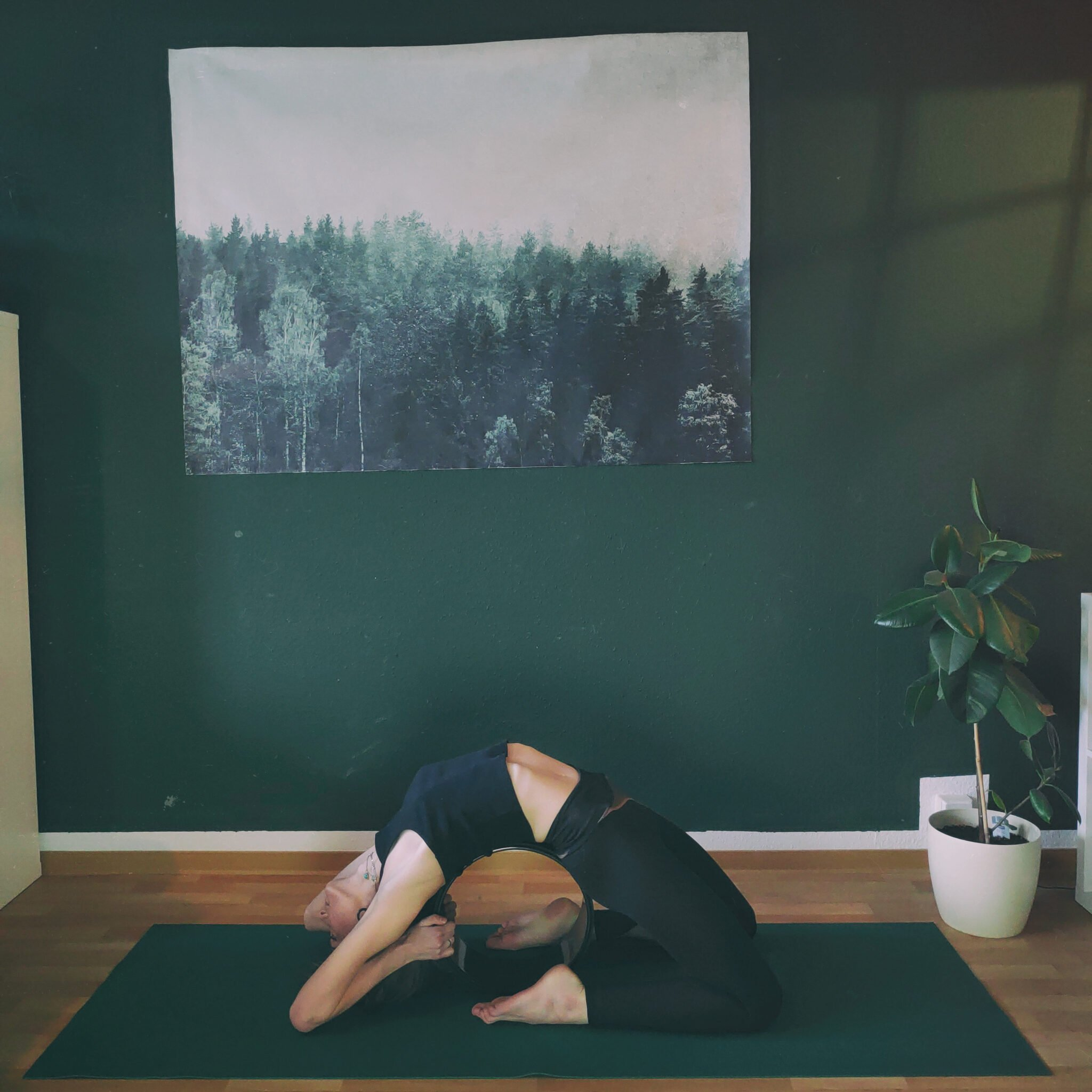 Supported Kapotasana Photo